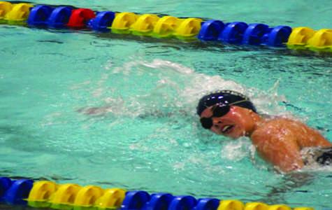 New swim and dive coach finds herself back in familiar territory