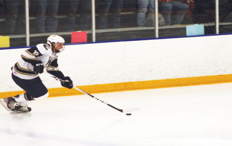 Blugolds skate to upset in front of home crowd