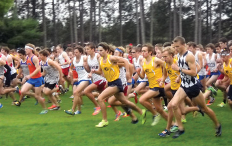 Cross country gets out hot at home course