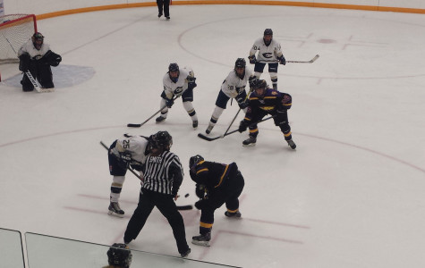 Women's hockey falls in battle with Pointers
