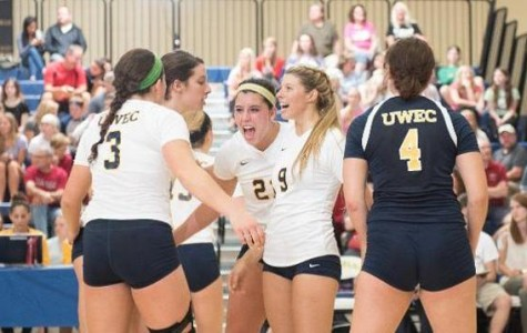 Volleyball goes 3-1 over weekend
