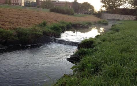 Little Niagara River Restoration Project