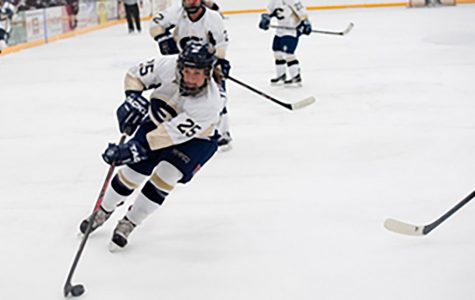 Women's hockey comes up short