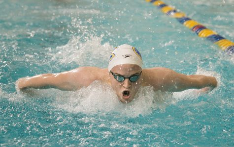 Swimming and diving makes a splash at Rochester Invite