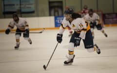 Blugolds women's hockey team defeated in WIAC championship