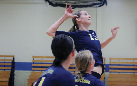 Young volleyball team shows maturity