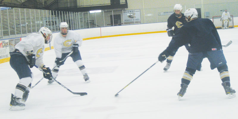 Hobbs Ice Center 2013 subsidy could increase