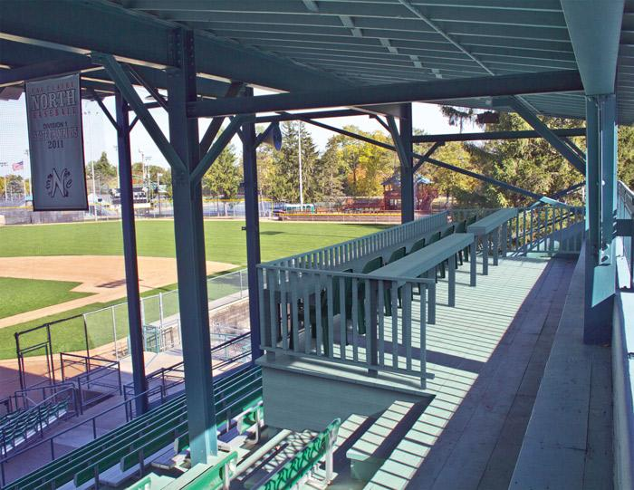 Deck expansion in Carson Park meets opposition