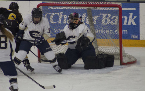 Women's hockey season ends at River Falls