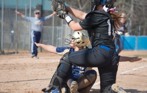 Softball falls to conference competition