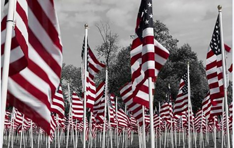 American flags standing proud at the Field of Honor in Eau Claire
