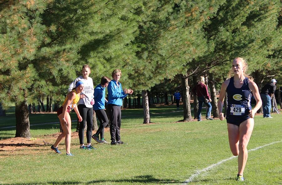 Blugold cross country teams find success at regionals