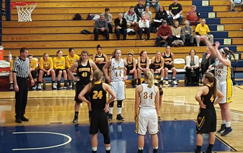 Blugold women's hoops drops home match up to UW-Oshkosh
