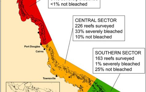 The importance of keeping the Great Barrier Reef alive