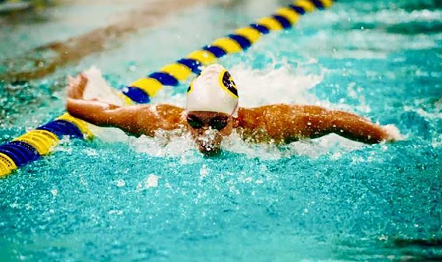 Blugold swimmer Nicole Bellford competing against the UW-La Crosse Eagles in a dual meet last fall.