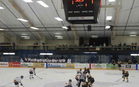 Women's Hockey team falls to Hamline and Gustavus Adolphus