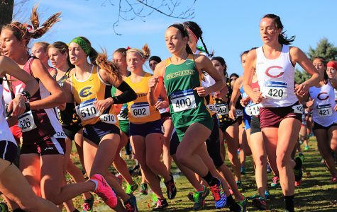 Cross country regional meet reveals Midwest competition