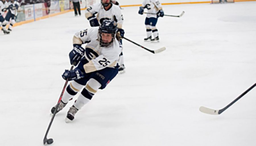 Blugold+Women%E2%80%99s+hockey+lost+their+second+contest+against+Gustavus+Adolphus+College+%28Minn.%29+in+a+close+game+Tuesday+night.