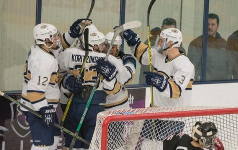 Eau Claire hockey players celebrate after one of their seven goals Saturday against Superior.