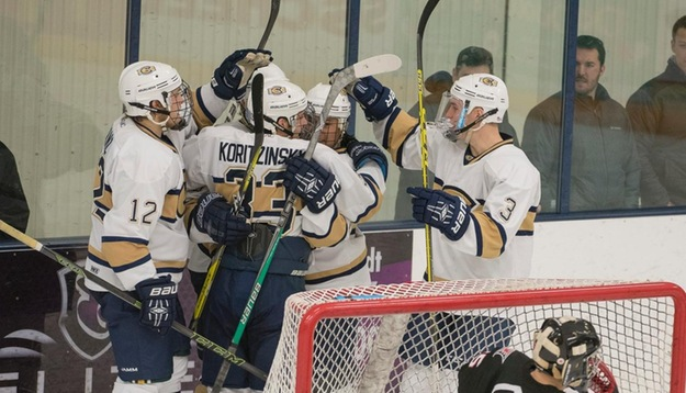 Eau+Claire+hockey+players+celebrate+after+one+of+their+seven+goals+Saturday+against+Superior.