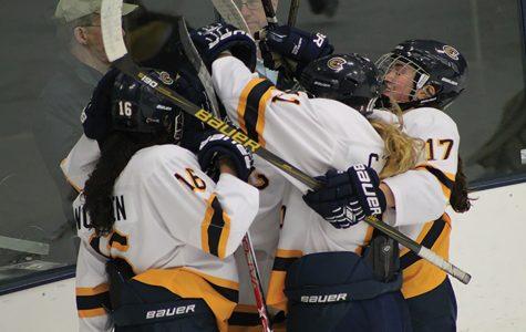UW-Eau Claire women's hockey falls to UW-Stevens Point Pointers