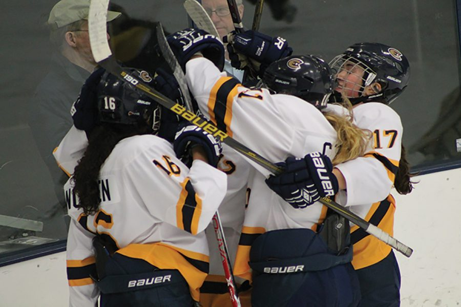 Players celebrate one of four goals scored against UW-Superior on Friday, Jan. 20.