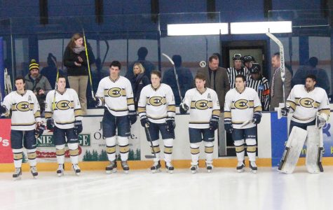Blugold men's hockey ends their season on a rough note