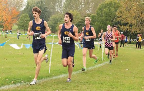 Blugold cross country season preview