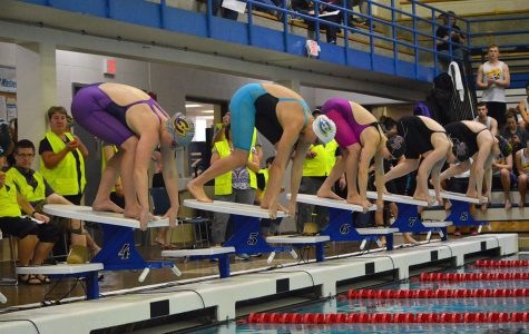 Blugold swim and dive team takes down Luther College
