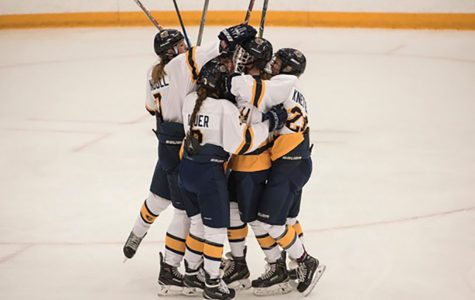 Blugolds defeat Oles, fall to Yellowjackets