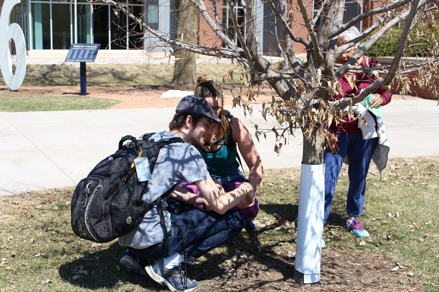 During a walk guided by Daria Hutchinson, Joe Rohrer and Matt Staudenmaier, students and community members were encouraged to ask questions about the trees that call the UW-Eau Claire campus their home.