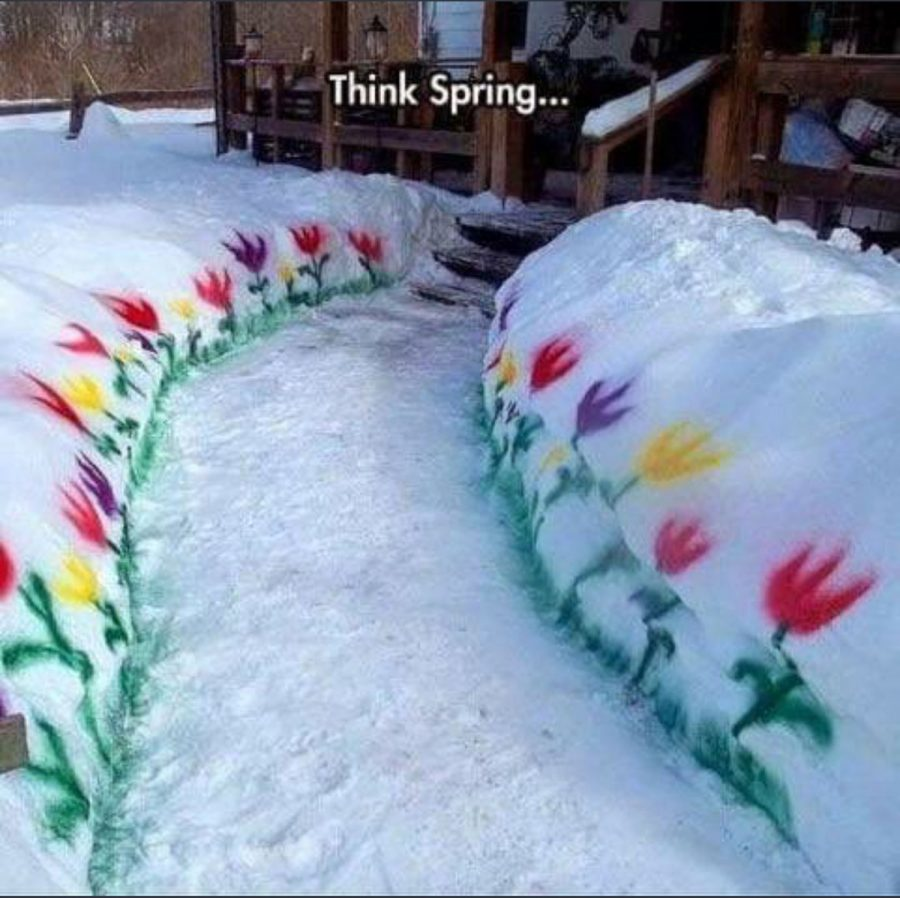 Temperatures+have+been+so+cold+this+April+that+we+in+the+Midwest+have+had+to+resort+to+this.%0A