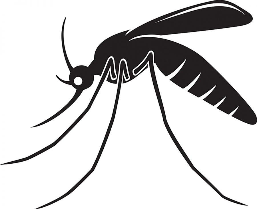 Attention Minnesotans! Killing mosquitos in legal. Swat away!
