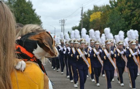 Even furry friends were entranced by the Blugold Marching Band.