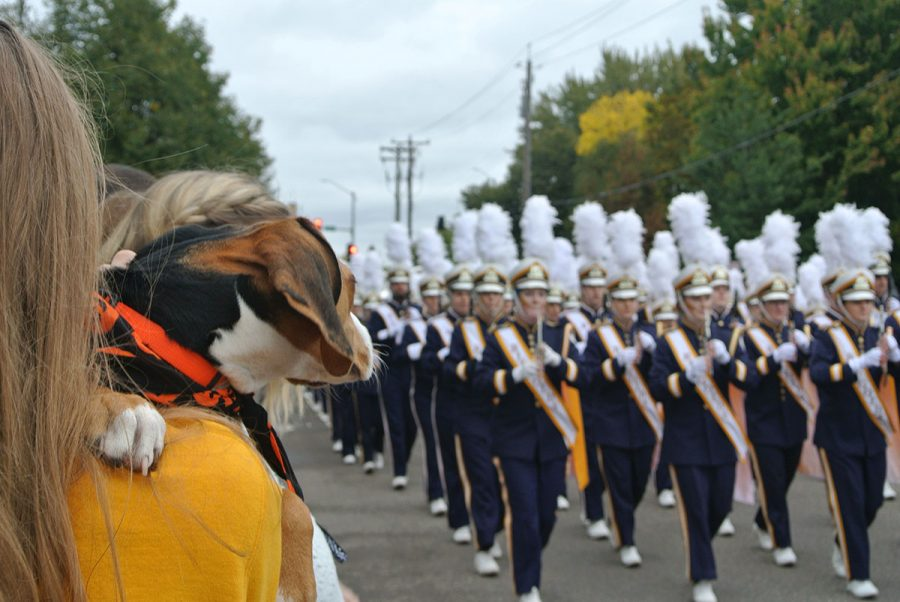 Even+furry+friends+were+entranced+by+the+Blugold+Marching+Band.+