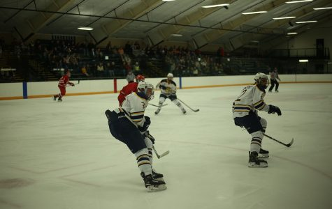 Men's hockey grabs two home wins over the weekend