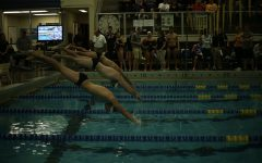 UW-Eau Claire swim and dive team dominates Titans