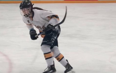 Women's hockey sweeps Stevens Point in semi-final round of WIAC tournament.