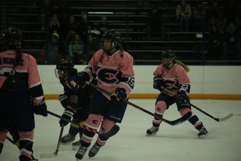 Women's hockey brings Blugolds to a 2-0-1 record on Thursday and Saturday