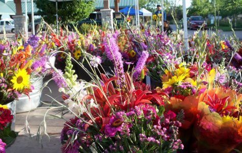 Freshly picked flowers for purchase at the summer 2018 Farmers Market.
