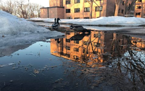 Local flooding persists, but is lower than expected