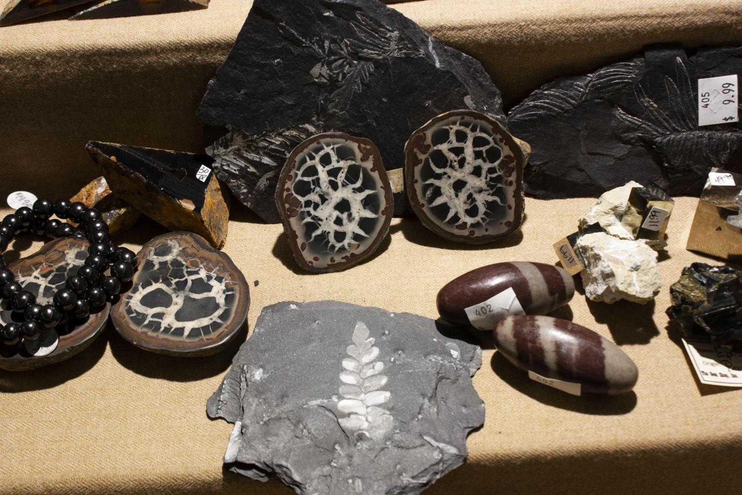Among+The+Gem+Shop+Inc%E2%80%99s+display+were+meteorites+from+Argentina.