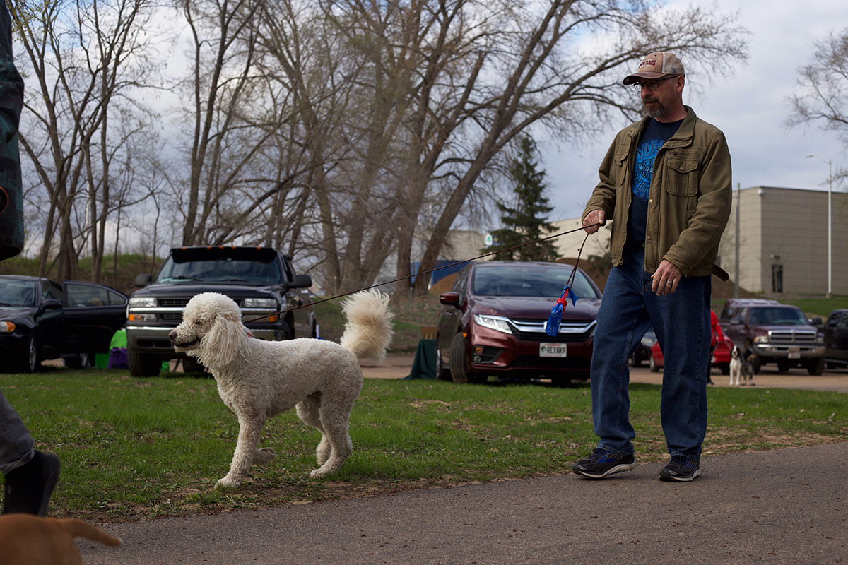 A+strutting+master%2C+a+poodle+and+her+owner+started+off+the+walk+in+style.+