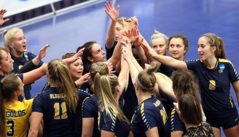 Volleyball falls in first round of NCAA tournament