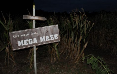 Leffel Roots orchard opens its fun-for-all, after-dark corn maze