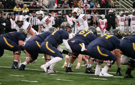 Blugolds score a victory against the UW-River Falls Falcons.