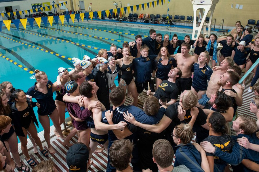Swim and dive team size up their closest rivals at the Rochester Invite