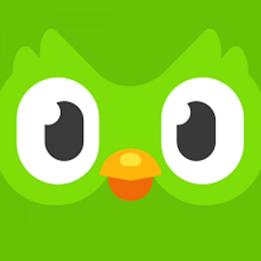 Duo%2C+the+green+owl+mascot+of+Duolingo+gives+notification+reminders+every+day.+