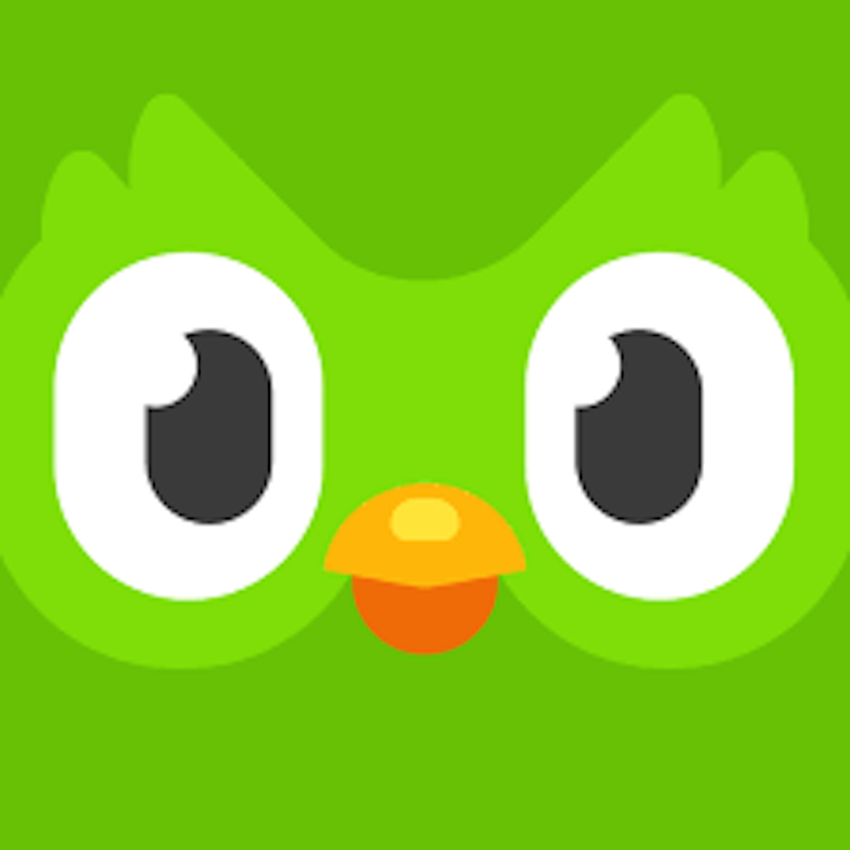 Duo, the green owl mascot of Duolingo gives notification reminders every day.