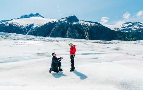 A Blugold fairy tale proposal